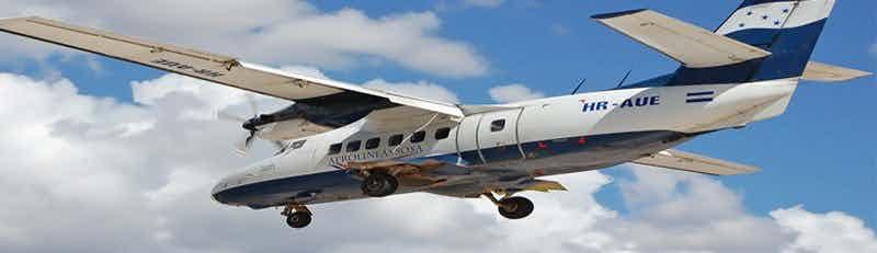 Aerolíneas Sosa flights