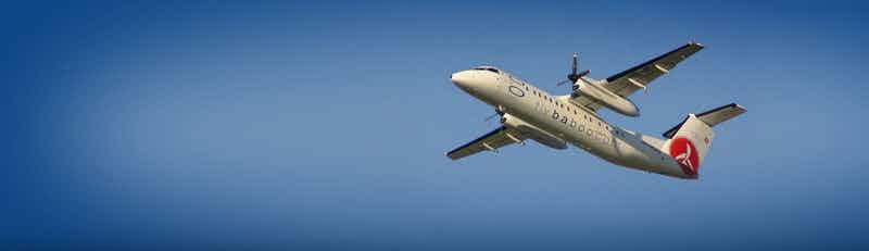 flybaboo flights