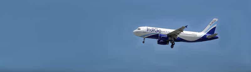 IndiGo flights