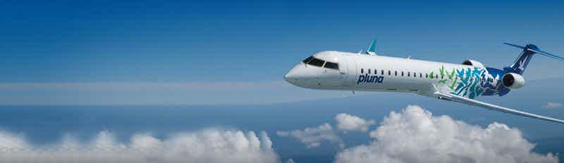 pluna flights