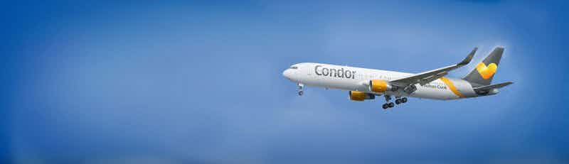 Condor flights